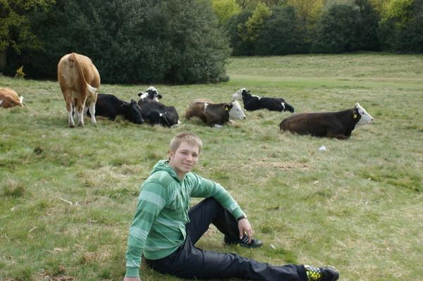 Dr.Shadow пасёт коров